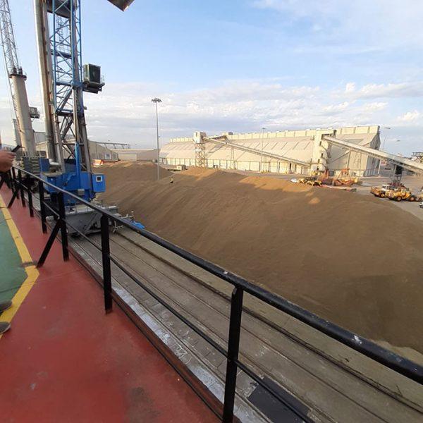 Agri-foodstuffs bulk cargo at Noatum Terminal Tarragona